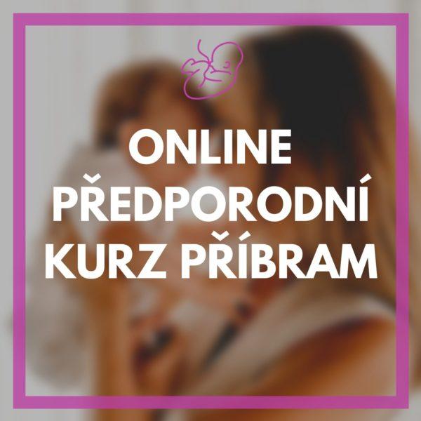 Online předporodní video kurz Příbram